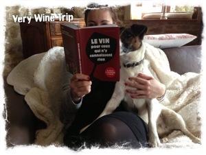 Un livre pour tous ceux qui n'y connaissent rien au vin...enfin, presque tous !
